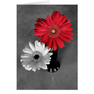 Red Color Splash Gerber Daisy Photograph Greeting Card