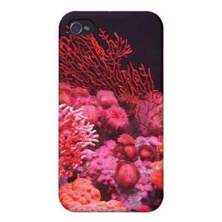 Red Coral Cases For iPhone 4