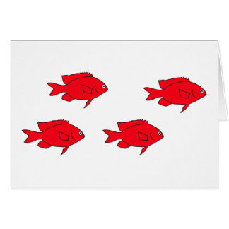 Red Coral Reef Fish Card