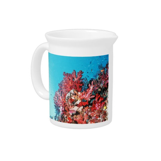 Red Coral Reef Pitcher