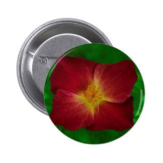 Red Cosmos Flower Design Pinback Button