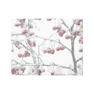 Red Crabapples in Snow Canvas Print