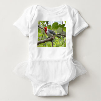 Red-crested Cardinal Baby Bodysuit