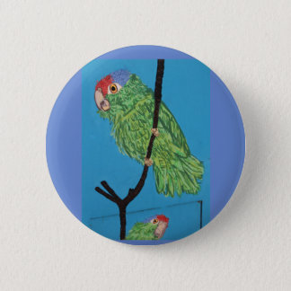 red-crowned parrot perching 6 cm round badge
