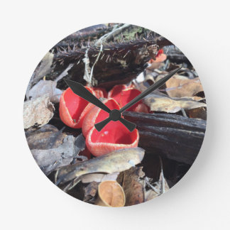 Red Cup Fungus Round Clock