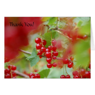 Red Currant Berries THANK YOU CARD