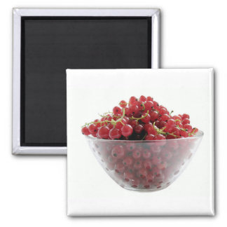 red currants magnet