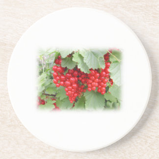 Red Currants on the Plant. Green Leaves. Beverage Coaster