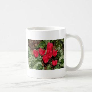 Red Cyclamen flowers in bloom Coffee Mug
