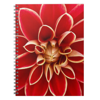 Red Dahlia Notebook