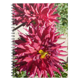 Red Dahlias Notebook or Journal