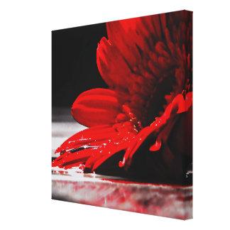 Red Daisy Gerbera Flower Canvas Print