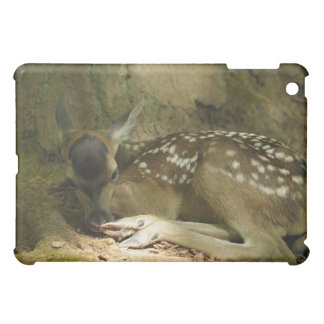 Red Deer Fawn in Forest, Germany Case For The iPad Mini