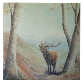 Red deer stag bellowing in a highland glen. large square tile