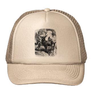 Red Deer Vintage Wood Engraving Trucker Hats