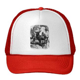 Red Deer Vintage Wood Engraving Hats