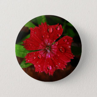 Red Dianthus With Raindrops 6 Cm Round Badge