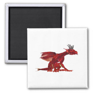 Red Dragon Magnet  Magnets