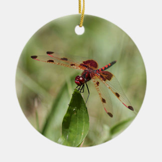 Red dragonfly round ceramic decoration