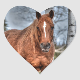 Red Dun Ranch Horse Animal-lover Photo Stickers