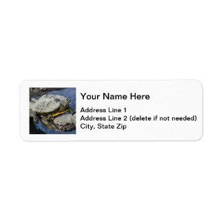Red-eared Slider Return Address Label