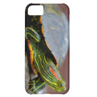 Red-eared Slider Side View Case For iPhone 5C