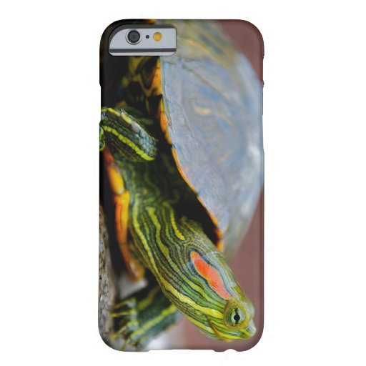 Red-eared Slider Side View iPhone 6 Case