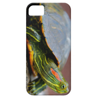 Red-eared Slider Side View Case For The iPhone 5