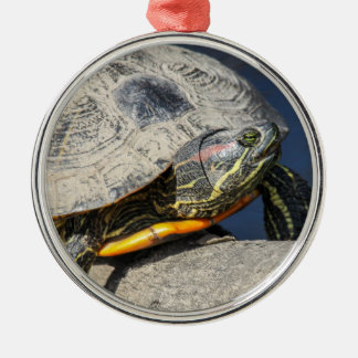 Red-Eared Slider Silver-Colored Round Decoration