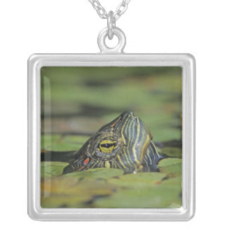 Red-eared Slider, Trachemys scripta elegans, Personalized Necklace