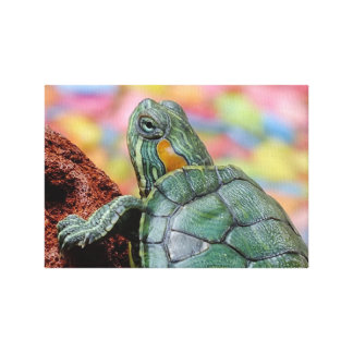 Red-eared slider turtle canvas print
