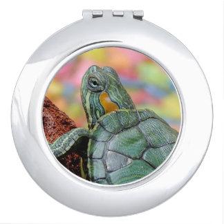 Red-eared slider turtle vanity mirrors
