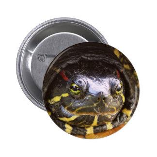 Red Eared Slider Turtle Head 6 Cm Round Badge