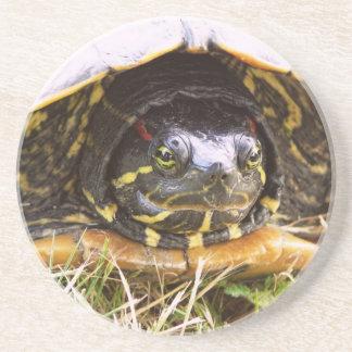 Red Eared Slider Turtle Head Coasters