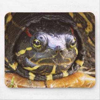 Red Eared Slider Turtle Head Mousepad