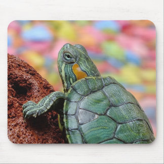 Red-eared slider turtle mouse pad