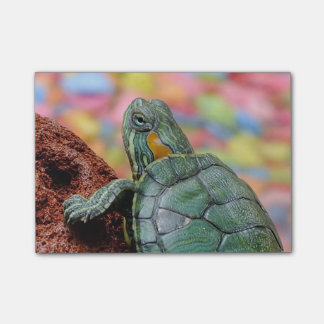 Red-eared slider turtle post-it® notes