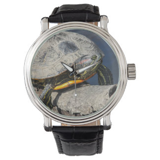 Red-eared Slider Wristwatches