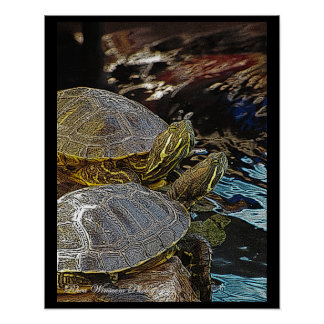 Red Eared Sliders Poster