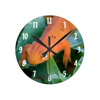 Red Eft Orange Salamander Nature Round Clock