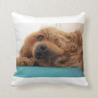 red english cocker spaniel 2.png cushion