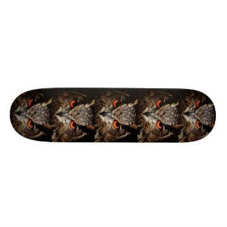 "red eye borwn owl skateboard 8 1/8"""