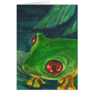 red eye green tree frog card