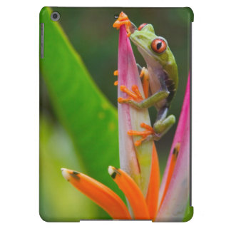 Red-eye tree frog, Costa Rica 2 iPad Air Covers