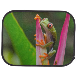 Red-eye tree frog, Costa Rica 2 Floor Mat