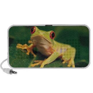 Red eye tree frog mini speakers