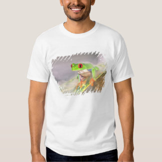 Red Eye Treefrog in the mist, Agalychinis T-shirts