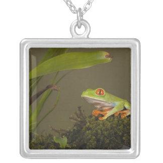 Red-eyed Leaf Frog, AKA Red-eyed Tree frog Square Pendant Necklace