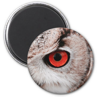 Red-Eyed Owl Magnet