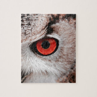 Red-Eyed Owl Puzzles
